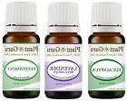 Trio Essential Oil Gift Set 3 - 10ml Sampler Kit 100% Pure T